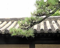 Kyoto roof up close by dwatsonartist, via Flickr
