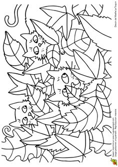 Coloriage cache cache feuilles chats sur Hugolescargot.com - Hugolescargot.com