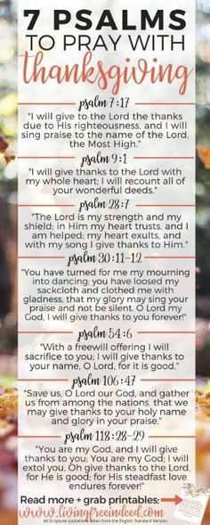 Why We Can Thank Jesus Everyday Free Indeed Psalms of Thanksgiving Praying the Psalms Attitude of Gratitude Thanksgiving Bible Verses What to Pray Thanking God Co. Bible Prayers, Bible Scriptures, Bible Quotes, Psalms Verses, Thanking God Scriptures, Thankful Scripture, Prayers Of Gratitude, Bible Psalms, Prayer Scriptures