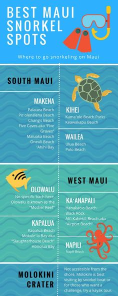 Best Snorkeling Spots Around Maui We have compiled a list of the best snorkeling locations in Maui Hawaii and how to get there!We have compiled a list of the best snorkeling locations in Maui Hawaii and how to get there! Maui Hawaii, Oahu, Visit Hawaii, Hawaii Life, Lahaina Maui, Trip To Maui, Maui Vacation, Vacation Ideas, Italy Vacation