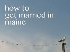 how to get married in maine - blog - a maine wedding officiant | wedding blog | wedding planning guide | expert on getting married in maine - a sweet start