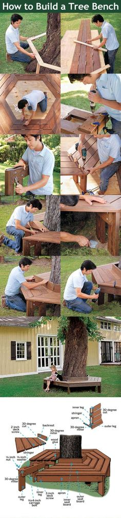 How To Build A Tree Bench Pictures, Photos, and Images for Facebook, Tumblr, Pinterest, and Twitter
