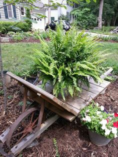 """""""antique"""" Wheelbarrow; I love to use anything as a pot and galvanized tins are no exception. This antique wheelbarrow I had to put new wood but the vintage look is priceless."""