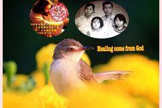 New slideshow: Close To Jesus 19/8/2014