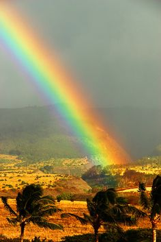 The end of a rainbow...surely there must be a pot of gold at the end of this glorious colorful arc !