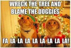 Wreck the tree and blame the doggies
