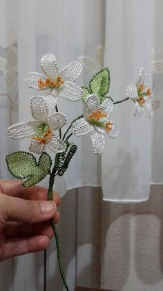 iğne oyası çiçek Turkish needle lace