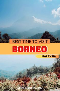Home to around 222 mammals, 420 birds, 100 amphibians and 394 fish, Borneo is a haven for wildlife and nature lovers. If you're wondering when is the best time to visit Borneo island, here's a complete guide for your Borneo Travel, Malaysia Travel, Travel Guides, Travel Tips, Travel Destinations, Travel Hacks, Travel Packing, Solo Travel, Budget Travel