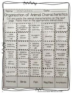 ANIMAL CLASSIFICATION AND ANIMAL CHARACTERISTICS SORTS FREEBIE! - TeachersPayTeachers.com