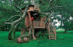 Lovely and beautiful tree house.