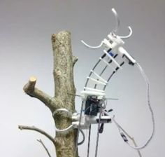 The Chinese University of Hong Kong - treebot - moves like (sort-of) an inch worm.