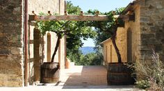 Casa Fabbrini - Agriturismo Toscana, immerso nella Val D'Orcia. South of Montepulciano