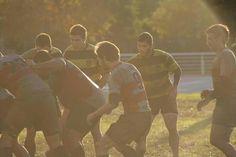 Tardes de rugby