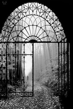 Gates of Autumn   Black and white photography   Moody mist photo
