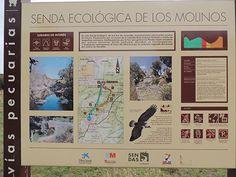 Más información sobre la ruta de los Molinos del Río Perales en: http://www.elhogarnatural.com/reportajes/Molinosrioperales.htm. Revista Cibernaturaleza número 2,  http://issuu.com/cibernaturaleza/docs/cibernaturaleza2?e=0/3845081