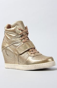 Ash Shoes The Cool Ter Sneaker in Platine : Karmaloop.com - Global Concrete Culture