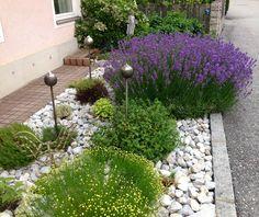 Vorgarten Sweet Home Design, Border Plants, Gravel Garden, Landscape Design, Entryway, Home And Garden, Backyard, House Design, Outdoor Decor