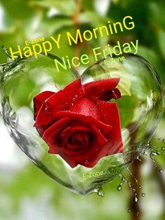 G Morning, Good Morning Friday, Good Morning Cards, Happy Morning, Good Morning Good Night, Morning Greeting, Good Morning Images, Good Morning Flowers Quotes, Good Morning Wallpaper