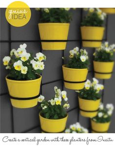 Adorable wall planters -- great for exterior walls or apartment balconies. Not at that price tho. I need to get creative and make my own...