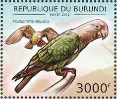 Cape Parrot stamps - mainly images - gallery format