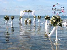 2 Dandelion, Saints, Floral Decorations, Islands, Flowers, Dandelions, Taraxacum Officinale