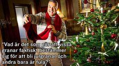 Ernst Kirchsteiger är allas vår mysfarbror och en riktig citatmaskin. Här har vi samlat några av Ernsts allra bästa citat genom åren. Bastilla, Im Crazy, Laughter, Humor, Happy, Christmas, Xmas, Humour, Funny Photos
