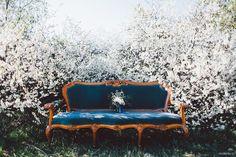 Олег+Ксюша: love-story.  #bridalbouquet #weddingbouquet #bouquet #white #whitewedding #silverwedding #blue #ranunkulyus #eucalyptus #flowerscherry #bluesofa #couch #sofa #peonyrose #shrubrose #brunei  #DavidAustin #wedding #bride #weddingday #букетневесты #свадебныйбукет #букет #белый #синий #белаясвадьба #ранункулюс #эвкалипт #цветывишни #пионовиднаяроза #кустоваяроза #бруния #ДэвидОстин #свадьба #невеста #свадебныйдень #диван #кушетка #синийдиван
