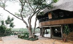 Chilo Gorge Safari Lodge - Gonarezhou National Park - Zimbabwe - Africa