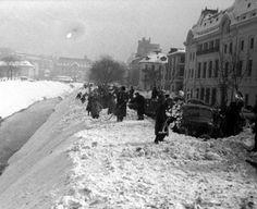 Poveştile celei mai crunte ierni care s-a abătut asupra României în secolul XX. Vijelia a ţinut două săptămâni, nămeţi de cinci metri au acoperit tot sud-estul ţării   adevarul.ro