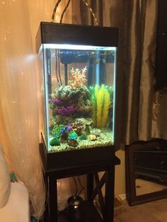 Fish tank stand on pinterest fish tanks tanked for 15 gallon fish tank stand