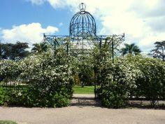 """""""El Rosedal""""ubicado en el Prado, conocido barrio de la ciudad de Montevideo - Uruguay"""