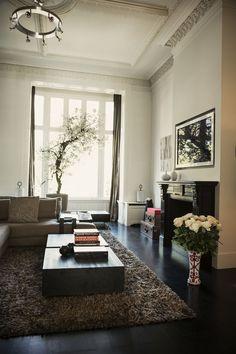 Bekijk hier Nikki Plessen's herenhuis aan het Amsterdamse Vondelpark Living Room Inspiration, Interior Design Inspiration, Home Living Room, Interior Design Living Room, Design Room, Living Area, Classic Living Room, Beautiful Interiors, Contemporary Interior