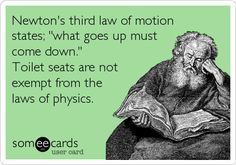 Newton's third law of motion states; 'what goes up must come down.' Toilet seats are not exempt from the laws of physics.
