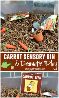 Spring is a great time to read The Carrot Seed and do some gardening dramatic play with this carrot sensory bin. Sensory Table, Baby Sensory, Sensory Bins, Sensory Activities, Infant Activities, Preschool Activities, Sensory Play, Retelling Activities, Kindergarten Sensory