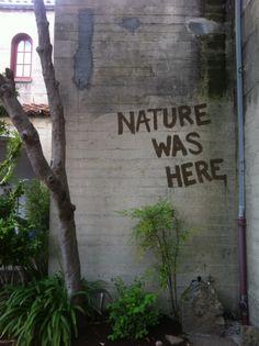 nature was here - banksy Banksy, Protest Kunst, Protest Art, Protest Signs, Urbane Kunst, Arte Obscura, Street Art Graffiti, Moss Graffiti, Urban Art