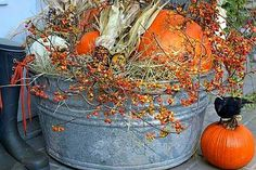 Fall decorating on the back deck?