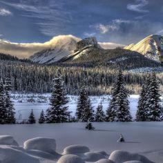 2048x2048 Papel de parede de neve, inverno, árvores