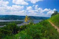 Visit #96 | Brady's Bluff Wisconsin State Natural Area #9 | Trempealeau County | http://wisconsinstatenaturalareas.com/2016/02/01/bradys-bluff/ | #wisconsin #wisconsinstatenaturalarea #wisconsindnr #trempealeaucounty #bradysbluff #discoverwisconsin #travelwi #wistatejournal #rei #explore #adventure #prairiewithaview