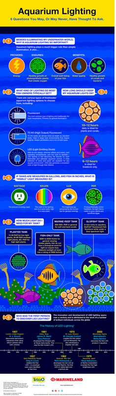 Aquarium Lighting Infographic from Marineland®. 6 questions you may, or may never, have thought to ask. Including LED lighting history. #aquariumtips #aquariumlighting