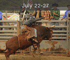 45 Best 2014 New York State County Fairs images | County fair, New