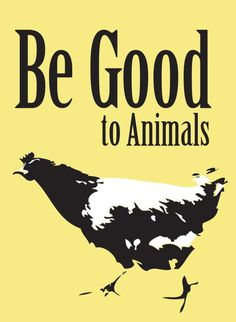 """please be good to animals: don't harm them; don't let them be harmed for you; don't treat them as """"things"""" #vegan"""