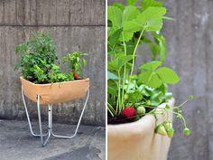 hochbeet: raised urban gardening by thinking hands - designboom | architecture & design magazine