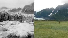 Before and After photos of Alaska glaciers taken over up to 100 years time. Some have retreated up to 30 miles! Stunning comparison shots!
