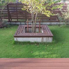 . 2015.9.2㈬⛅️ . 今朝、久しぶりに… お日様が覗きました⛅️ . 先日の台風の影響で 庭のかつらの木…例年より早めの落葉 . 今年の夏は、ととさんのお仕事が 忙しかったのもあり…お庭が放置気味 . 芝刈りも1回しかしてないし… 肥料も撒いてない…と庭を眺めながら ととさん、ボヤいておりました . 涼しくなったら ぜひ頑張って下さいまし . . #庭#庭木#カツラ#シンボルツリー#芝生 #ガーデン#ガーデニング