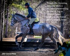 Photos and words of wisdom from George Morris' 2014 clinic at Bridle Creek Farm Horse Riding Quotes, Horse Riding Tips, My Horse, Equine Quotes, Equestrian Quotes, George Morris Quotes, Inspirational Horse Quotes, English Riding, Horse Training