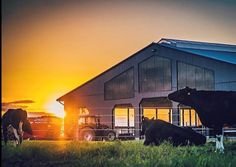 All these beautiful sunrises and sunsets have us wanting to be outside from dusk till dawn! This beautiful photo of an Oxford farm is from ! If you'd like to be featured don't forget to use the hashtag ! Dusk Till Dawn, Beautiful Sunrise, Sunrises, Wonderful Places, Don't Forget, Tourism, The Outsiders, Scenery, Oxford