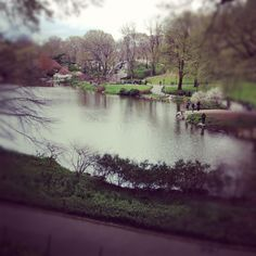 :: Central Park - NYC ::