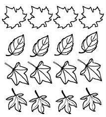 diversas folhas de outono para colorir