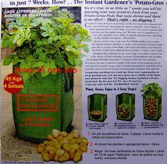 Cultivar papas en una bolsa