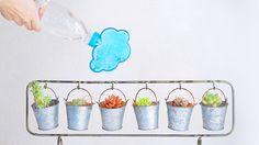 ペットボトルがかわいいジョーロに大変身!「Rainmaker」   箱庭 haconiwa 女子クリエーターのためのライフスタイル作りマガジン